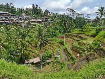 Viaje a INDONESIA (Bali y Komodo) 3