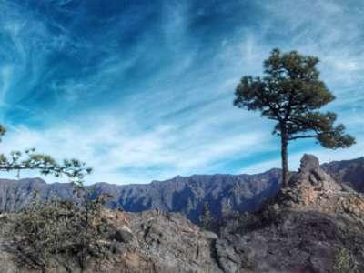 Viaje a La Palma 5
