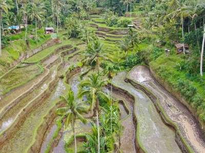 Viaje a Bali 4