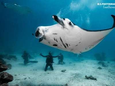 Viaje a Maldivas buceo 1