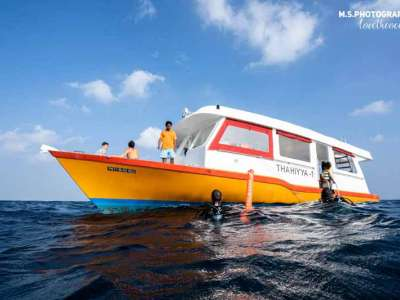 Viaje a Maldivas buceo 5