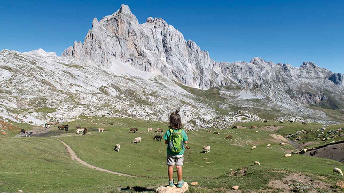 wildkids blog de viajes
