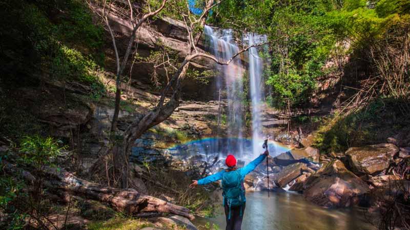 selva en tailandia
